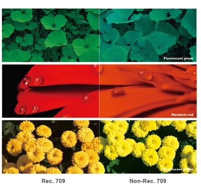 REC709 Colour