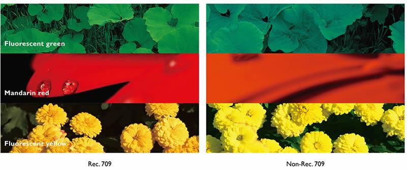 W1120 REC.709 Colour